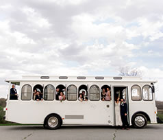 Ledo Wedding - 2017 - Trolley