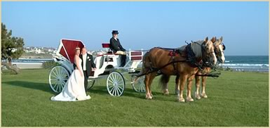 Horsedrawn Carriage for weddings